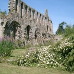 My Favourite Monastic Ruins and a Giveaway too!